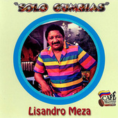 Play & Download Solo Cumbias by Lisandro Meza | Napster