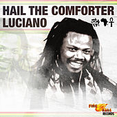 Hail the Comforter by Luciano