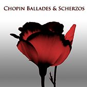 Play & Download Chopin Ballades & Scherzos by Arthur Rubinstein | Napster