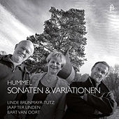 Play & Download Hummel: Sonatas & Variations by Various Artists | Napster
