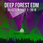 Deep Forest EDM Selection, Pt. 1 - 2016 - EP by Various Artists