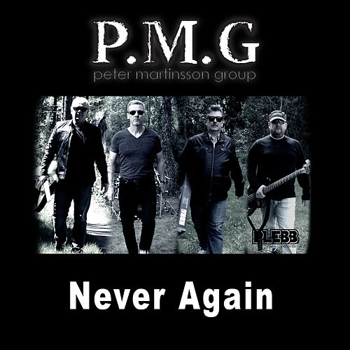 Never Again by Peter Martinsson Group