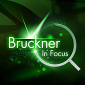 Play & Download Bruckner - In Focus by Various Artists | Napster