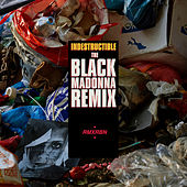 Play & Download Indestructible (The Black Madonna Remix) by Robyn | Napster