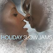 Play & Download Holiday Slow Jams by Various Artists | Napster