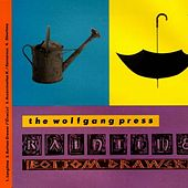 Raintime by The Wolfgang Press