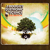 Soul Vibrations by J Boogie's Dubtronic Science