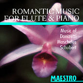 Play & Download Romantic Music For Flute & Piano by Er'ella Taimi | Napster