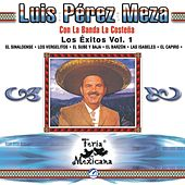 Play & Download Luis Perez Meza Con La Banda La Costena  Los Exitos Vol. 1  Feria Mexicana by Banda La Costena | Napster