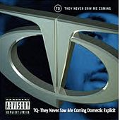 Play & Download Tq They Never Saw Me Coming Domestic Explicit by TQ | Napster