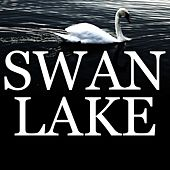 Tchaikovsky: Swan's Theme (Song of the Swans from