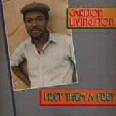 Play & Download Fret Them a Fret by Carlton Livingston | Napster