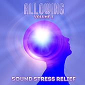 Play & Download Sound Stress Relief: Allowing, Vol. 2 by Various Artists | Napster