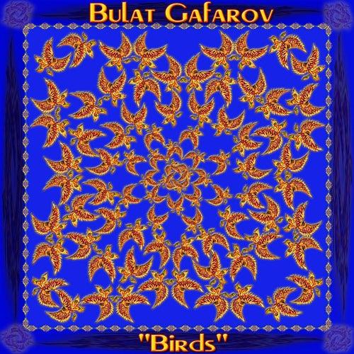 Birds by Bulat Gafarov