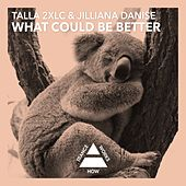 Play & Download What Could Be Better by Talla 2XLC | Napster