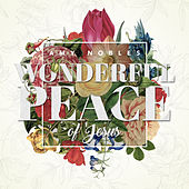 Play & Download Wonderful Peace of Jesus - Single by Amy Nobles | Napster