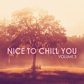 Nice to Chill You, Vol. 3 by Various Artists
