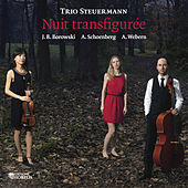 Play & Download Nuit transfigurée by Trio Steuermann | Napster