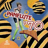 Panflute '70 by Ecosound