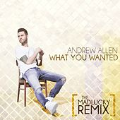 Play & Download What You Wanted (The Madlucky Remix) by Andrew Allen | Napster