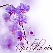 Play & Download Spa Breaks 50 Relaxing Songs – Fifty Quiet Moments of Relaxation under Bamboo Shades in Your Zen Room, Emotional Peaceful Songs for Spa Day by Serenity Spa: Music Relaxation | Napster