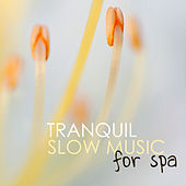 Play & Download Tranquil Slow Music for Spa - Tranquility Wellness Songs for Serenity and Hotel Sauna Relaxation by Tranquil Music Sound of Nature | Napster