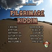 Pilgrimage Riddim by Various Artists
