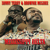 Mississippi Delta by Sonny Terry & Brownie McGee