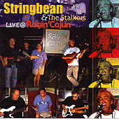 Live @ Ragin' Cajun by Stringbean & The Stalkers