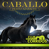 Play & Download Club Corridos Presenta: Caballo Prieto Azabache by Various Artists | Napster