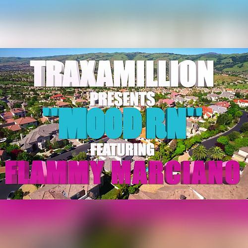 Play & Download Mood RN (feat. Flammy Marciano) - Single by Traxamillion | Napster