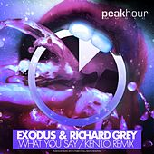Play & Download What You Say (Ken Loi Remix) by Exodus | Napster