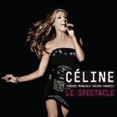 La Tournée Mondiale Taking Chances  LE SPECTACLE de Celine Dion