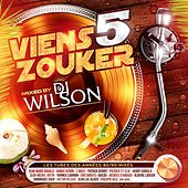 Play & Download Viens zouker, vol. 5 by Various Artists | Napster