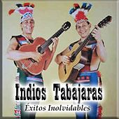 Play & Download Éxitos Inolvidables by Los Indios Tabajaras | Napster