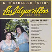 Play & Download 6 Decadas - 20 Exitos by Las Jilguerillas | Napster