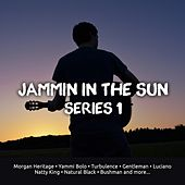Play & Download Jammin In The Sun, Series. 1 by Various Artists | Napster