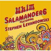 Whim by Salamander6
