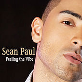 Feeling the Vibe (Remaster) by Sean Paul