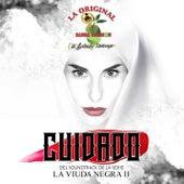 Play & Download Cuidado by La Arrolladora Banda El Limon | Napster