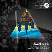 Talking to You Remixes by Josh Wink