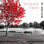 Play & Download Delicate Flow by Laurent Dury | Napster