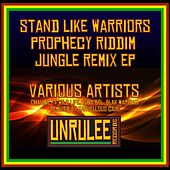 Stand Like Warriors (Prophecy Riddim Jungle Remix) - EP by Various Artists