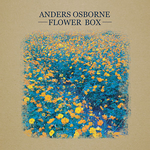 Play & Download Flower Box by Anders Osborne | Napster