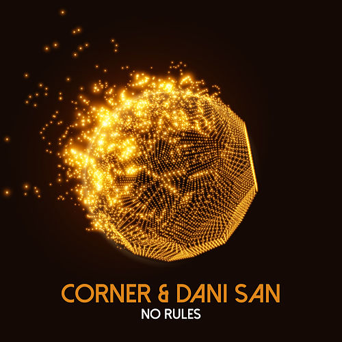 No Rules by Dani San