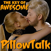 Pillow Talk - Parody of Zayn's