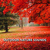 Play & Download Outdoor Nature Sounds by Sounds Of Nature | Napster