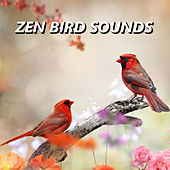 Zen Bird Sounds by Bird Sounds