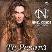 Te Pesará - Single by Ninel Conde