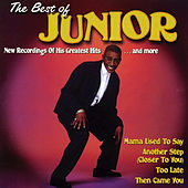 Play & Download The Best of Junior - Mama Used to Say by Junior | Napster
